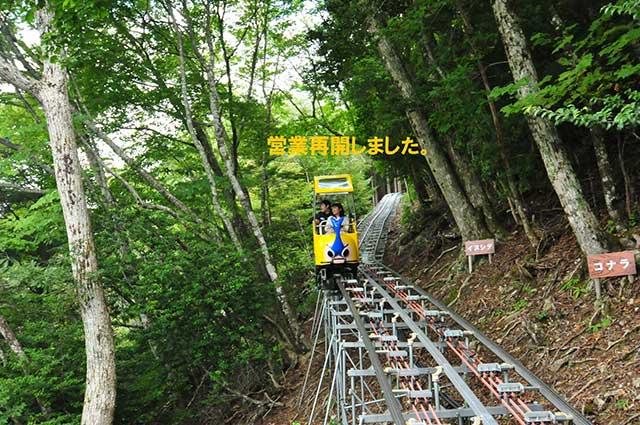 奥祖谷観光周遊モノレール